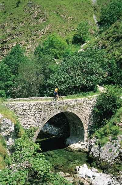 Puente de Treviso en La Hermida