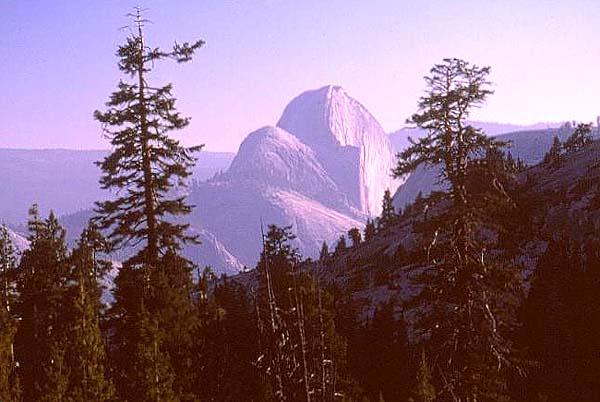 El impresionante muro noroeste del Half Dome - Foto: Archivo Desnivel