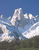 Fantástica vista del Picu Urriellu.Foto: Col. P.A. Ortega.