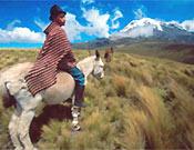 """Young shepherd of Pullingui, de Philippe Henry, Quebec (Canadá). Premio """"Gente de Montaña"""", XIII Edición Memorial Maria Luisa. - Foto: <a href=""""http://www.memorialmarialuisa.com/"""">memorialmarialuisa.com</a>"""