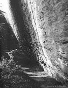 Josune envuelta en la magia de los bosques de Lindental, Suiza, donde se esconde E la nave va... - Foto: Rikar Otegui