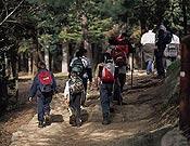 Las nuevas topoguías describirán la red de buvles senderistas del Pirineo.- Foto: Darío Rodríguez