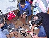 Preparando el material para las restauraciones. - Foto: Eduardo Rodríguez
