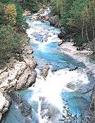 El río Vellós en el cañón de Añisclo. - Foto: Sincronía Audiviosual