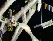 En Val Daone ya está todo listo para la Copa dle Mundo de hielo 2006.- Foto: daoneicemaster.it
