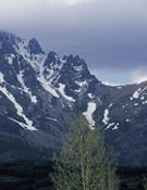 Parque natural de la montaña palentina, donde se quiere construir la estación.~ desnivelpress.com