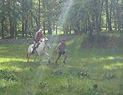 Una de las pruebas especiales, montar a caballo, en Orientaventura 2006.- Foto: orientaventura.com