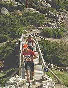 Corredores por la zona de la Laguna Grande, Peñalara, en la edición anterior del Maratón Alpino Madrileño.<br>Foto: Sergio Prieto