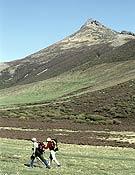 Paisaje de las montañas de Palencia.- Foto: Darío Rodríguez