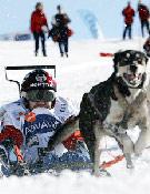 Uno de los corredores en la modalidad de skijoring, tirado por su perro.- Foto: Pirena.com