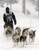 Un corredor durante una edición pasada de Pirena.- Foto: Pirena.com