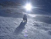 Largo de hielo para Marko, abriendo vía en el Chomolhari. Foto: Marko Prezelj