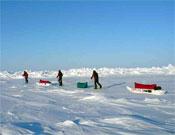 Caravana hacia el Polo Norte.- Foto: Cortesía de Jesús Calleja
