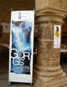 Gorgs 2008, otro año con éxito.- Foto: Cortesía de la Organización