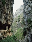 Puente colgante sobre el desfiladero.