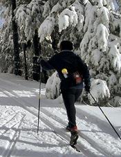 Esquiador de fondo en Guadarrama
